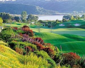 Four Seasons Residence Club Aviara Golf