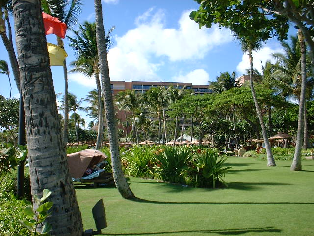Marriott Maui Ocean Club Grass Area