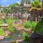 Westin Kaanapali Ocean Resort Villas Koi Pond