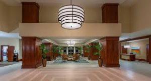 palmeras-lobby